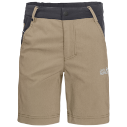 DILLON FLEX SHORTS